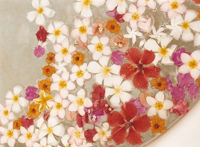 Phương pháp chữa bệnh từ tắm hoa - Ảnh 1.