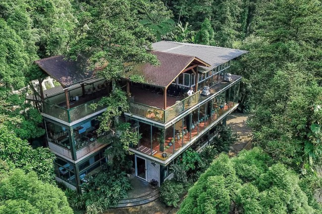 Vị giáo sư độc thân sở hữu ngôi nhà kính trong thung lũng 12.000m² với cuộc sống khó ai tin được - Ảnh 1.