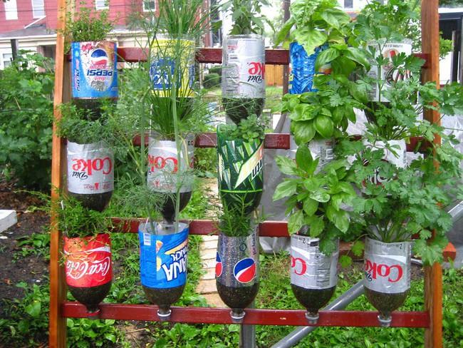 Mách bạn cách trồng rau xanh ngay trong nhà phố mà vẫn đảm bảo chất lượng và số lượng - Ảnh 1.