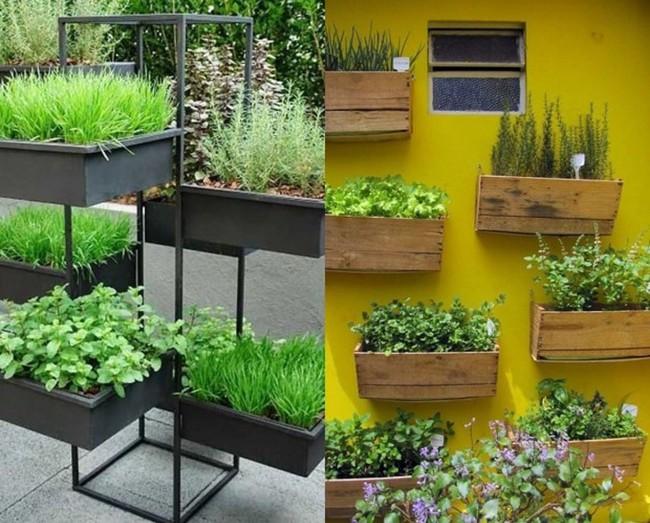Mách bạn cách trồng rau xanh ngay trong nhà phố mà vẫn đảm bảo chất lượng và số lượng - Ảnh 9.