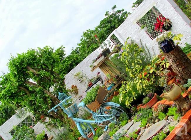 Mẹ bỉm sữa bận rộn chăm con vẫn tạo cả khu vườn sen đá độc đáo từ đồ dùng cũ ở Lâm Đồng - Ảnh 5.