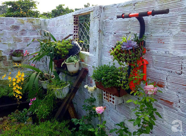 Mẹ bỉm sữa bận rộn chăm con vẫn tạo cả khu vườn sen đá độc đáo từ đồ dùng cũ ở Lâm Đồng - Ảnh 1.