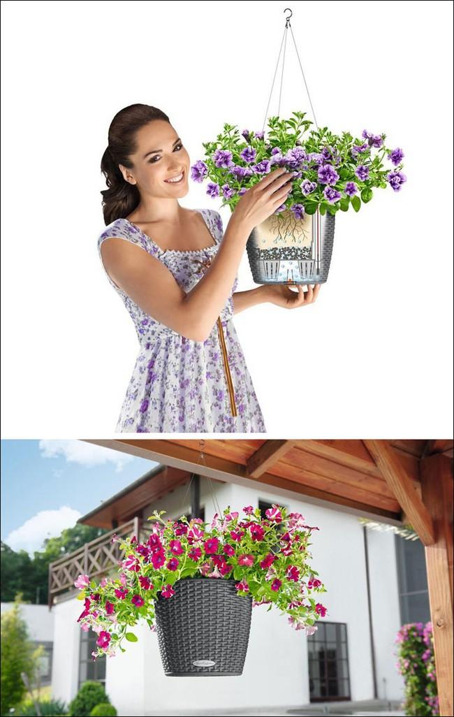 8 thiết kế chậu trồng cây vừa nhỏ gọn lại vô cùng thông minh cho nhà thêm xanh mát   - Ảnh 5.