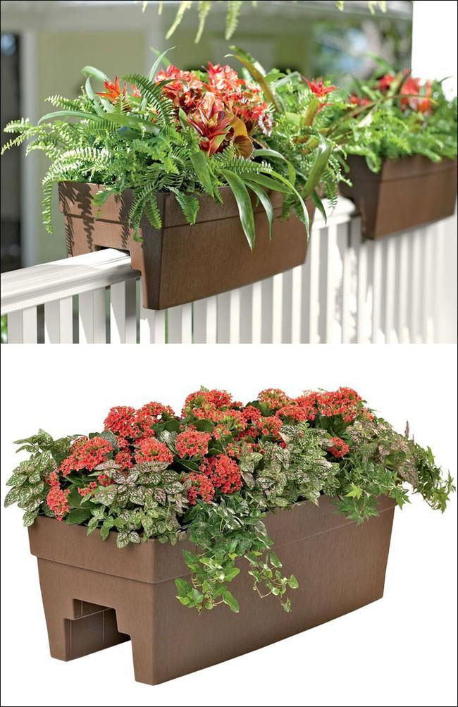 8 thiết kế chậu trồng cây vừa nhỏ gọn lại vô cùng thông minh cho nhà thêm xanh mát   - Ảnh 7.