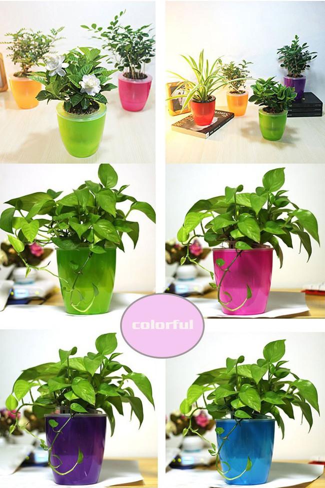 8 thiết kế chậu trồng cây vừa nhỏ gọn lại vô cùng thông minh cho nhà thêm xanh mát   - Ảnh 8.