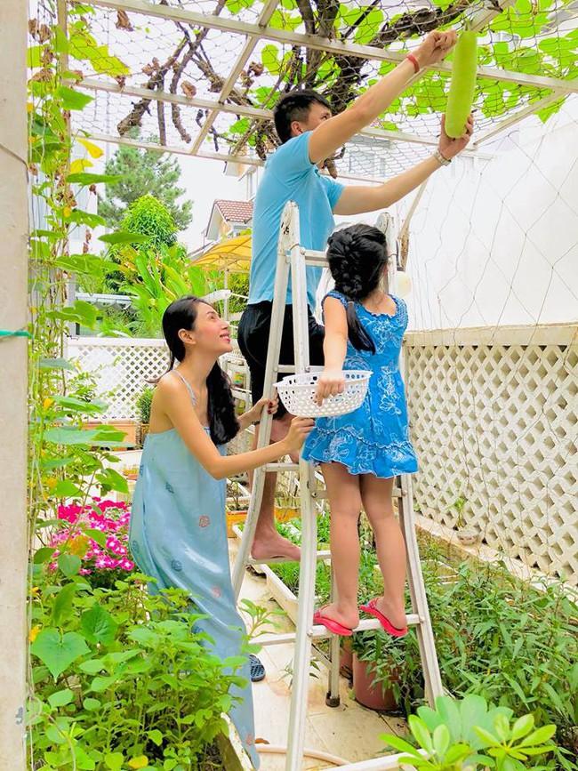 Vợ chồng Công Vinh – Thủy Tiên vui vẻ thu hoạch rau quả sạch trong vườn nhà - Ảnh 2.