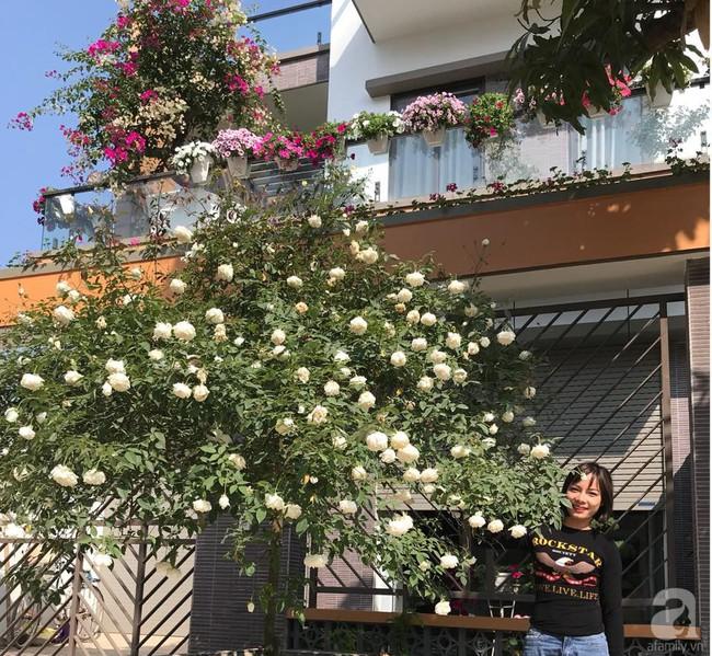 Choáng ngợp trước vườn hoa hồng vài nghìn gốc của mẹ trẻ xinh đẹp ở Thái Nguyên - Ảnh 1.