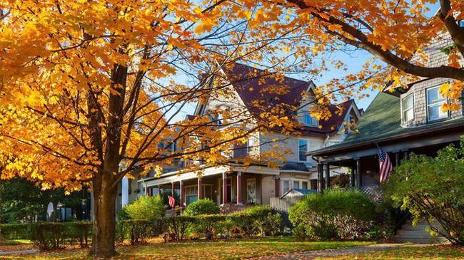 Những ngôi nhà dưới tán lá vàng lãng mạn như một bức tranh phong cảnh tuyệt đẹp - Ảnh 6.