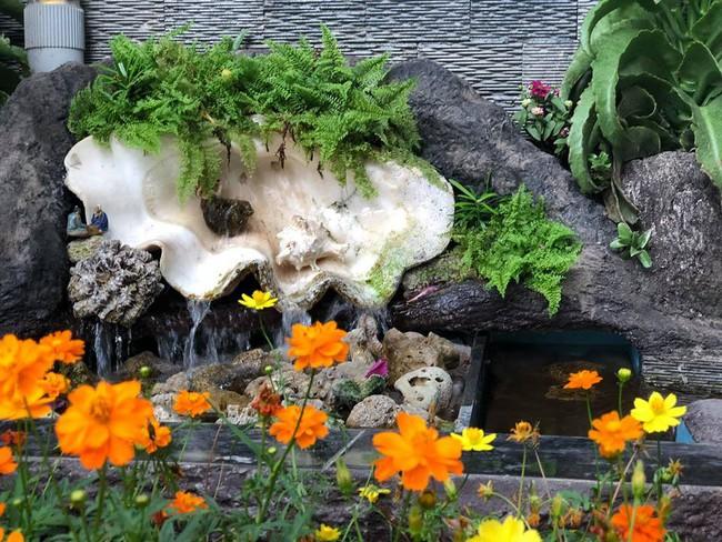 Ngắm vườn rau sạch và hoa tươi vô cùng bình yên của vợ chồng nghệ sĩ Hồng Vân và Lê Tuấn Anh - Ảnh 23.