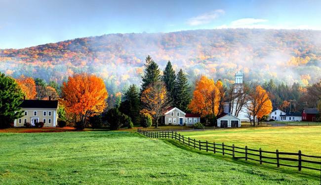 Những ngôi nhà dưới tán lá vàng lãng mạn như một bức tranh phong cảnh tuyệt đẹp - Ảnh 12.
