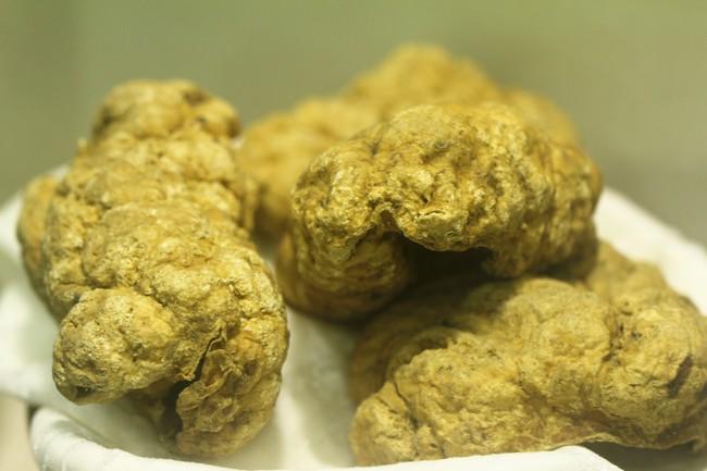 Vụ thuốc làm từ thịt người: Việt Nam đã từng sử dụng cơ thể con người làm thuốc - Ảnh 2.