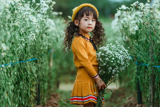 Đã xinh lại thần thái, bé gái Hà Nội dạo chơi trong vườn cúc họa mi khiến ai đi qua cũng phải ngoái nhìn - Ảnh 3.