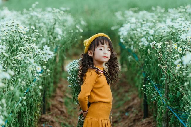 Đã xinh lại thần thái, bé gái Hà Nội dạo chơi trong vườn cúc họa mi khiến ai đi qua cũng phải ngoái nhìn - Ảnh 12.