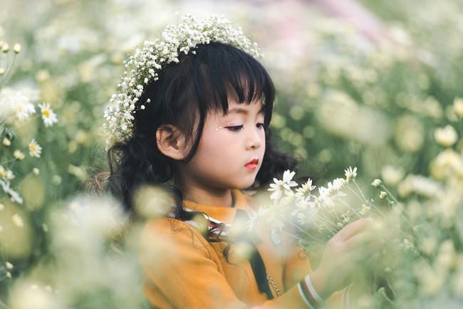 Đã xinh lại thần thái, bé gái Hà Nội dạo chơi trong vườn cúc họa mi khiến ai đi qua cũng phải ngoái nhìn - Ảnh 16.
