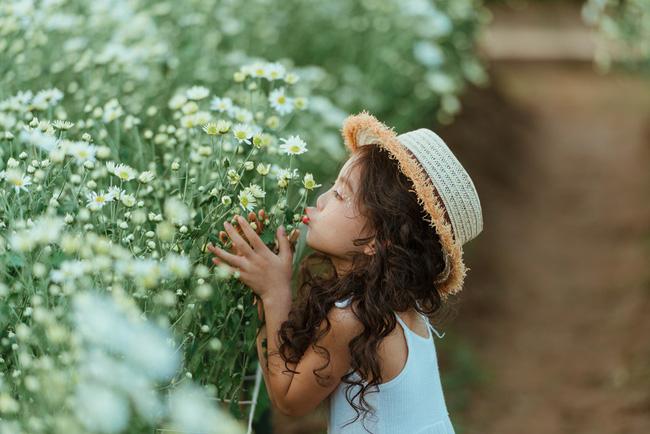 Đã xinh lại thần thái, bé gái Hà Nội dạo chơi trong vườn cúc họa mi khiến ai đi qua cũng phải ngoái nhìn - Ảnh 19.