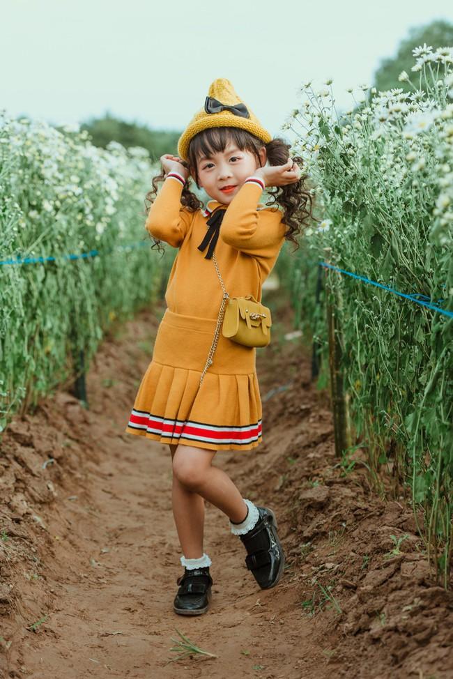 Đã xinh lại thần thái, bé gái Hà Nội dạo chơi trong vườn cúc họa mi khiến ai đi qua cũng phải ngoái nhìn - Ảnh 5.