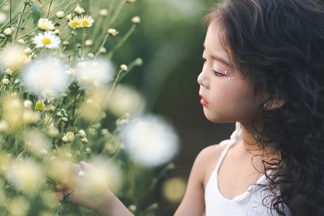 Đã xinh lại thần thái, bé gái Hà Nội dạo chơi trong vườn cúc họa mi khiến ai đi qua cũng phải ngoái nhìn - Ảnh 22.
