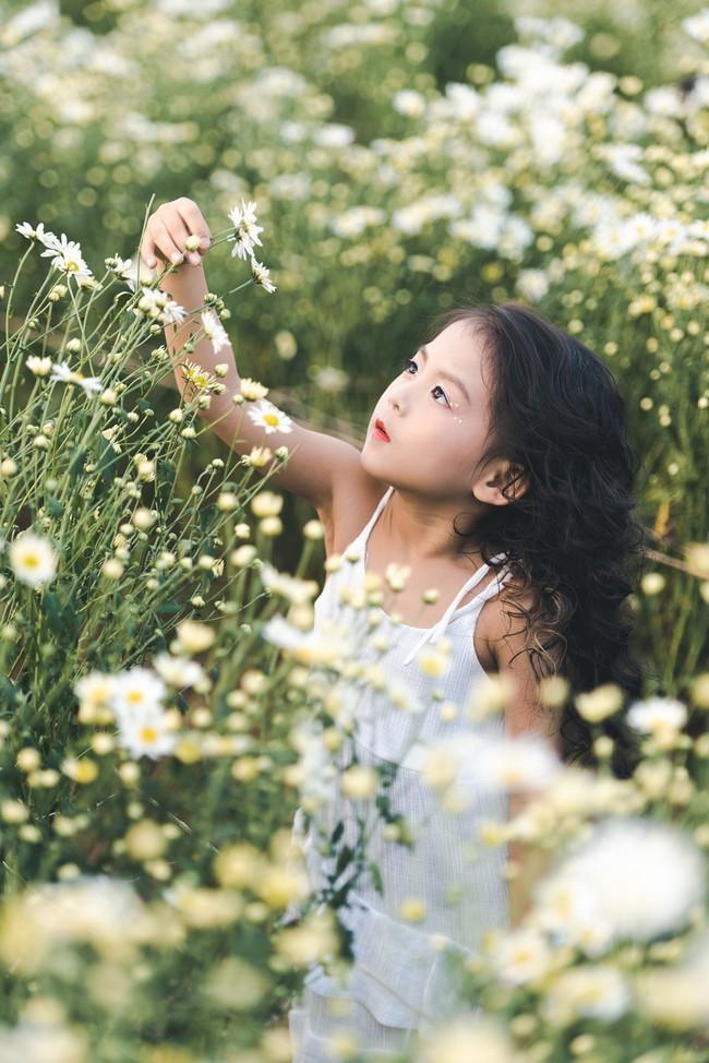 Đã xinh lại thần thái, bé gái Hà Nội dạo chơi trong vườn cúc họa mi khiến ai đi qua cũng phải ngoái nhìn - Ảnh 23.
