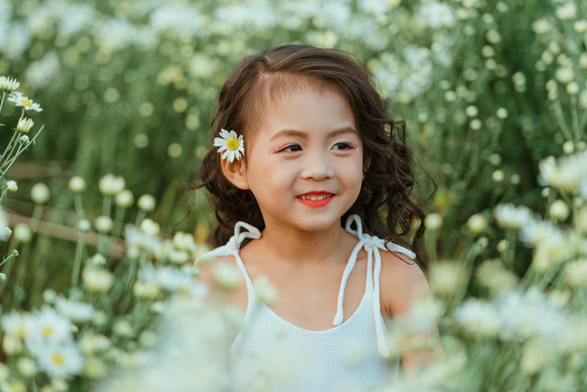 Đã xinh lại thần thái, bé gái Hà Nội dạo chơi trong vườn cúc họa mi khiến ai đi qua cũng phải ngoái nhìn - Ảnh 24.