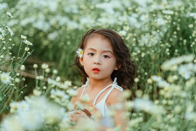 Đã xinh lại thần thái, bé gái Hà Nội dạo chơi trong vườn cúc họa mi khiến ai đi qua cũng phải ngoái nhìn - Ảnh 25.