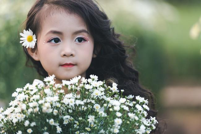 Đã xinh lại thần thái, bé gái Hà Nội dạo chơi trong vườn cúc họa mi khiến ai đi qua cũng phải ngoái nhìn - Ảnh 1.