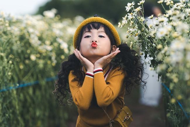 Đã xinh lại thần thái, bé gái Hà Nội dạo chơi trong vườn cúc họa mi khiến ai đi qua cũng phải ngoái nhìn - Ảnh 6.