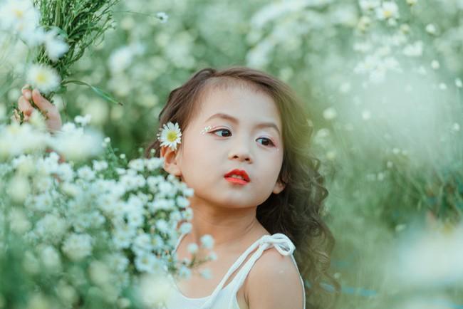Đã xinh lại thần thái, bé gái Hà Nội dạo chơi trong vườn cúc họa mi khiến ai đi qua cũng phải ngoái nhìn - Ảnh 29.