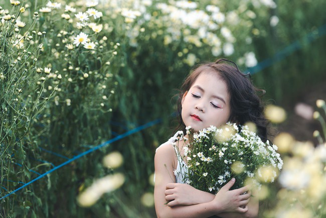 Đã xinh lại thần thái, bé gái Hà Nội dạo chơi trong vườn cúc họa mi khiến ai đi qua cũng phải ngoái nhìn - Ảnh 30.