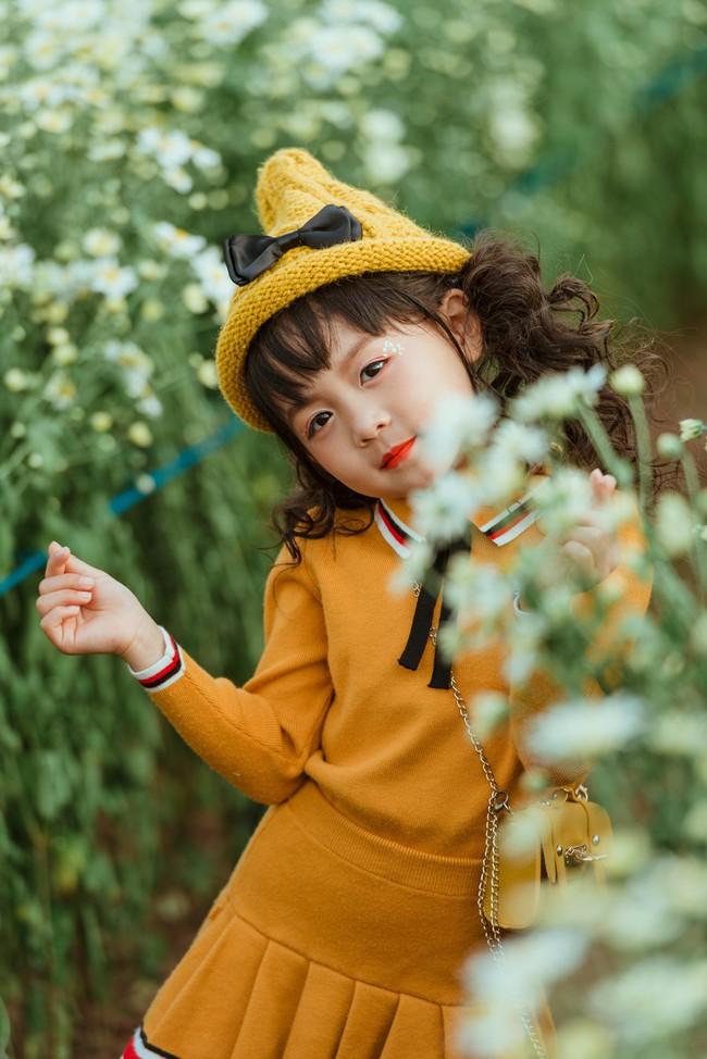 Đã xinh lại thần thái, bé gái Hà Nội dạo chơi trong vườn cúc họa mi khiến ai đi qua cũng phải ngoái nhìn - Ảnh 7.