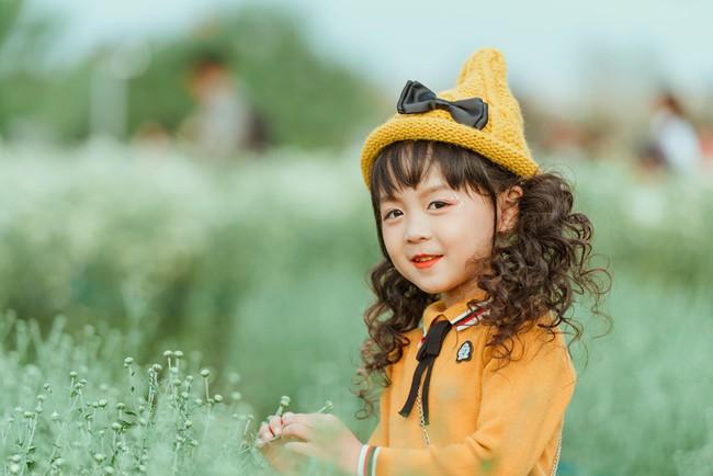 Đã xinh lại thần thái, bé gái Hà Nội dạo chơi trong vườn cúc họa mi khiến ai đi qua cũng phải ngoái nhìn - Ảnh 8.
