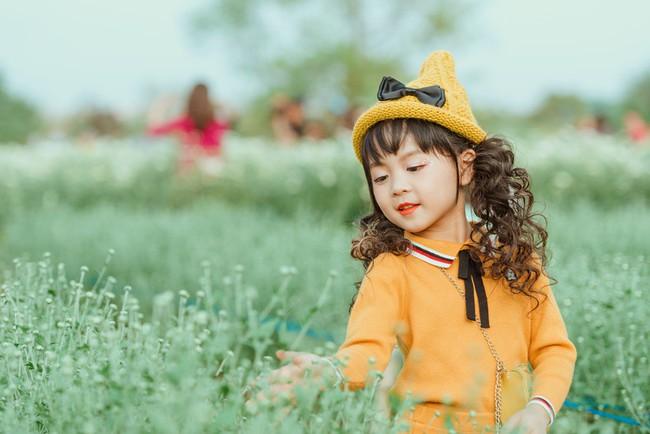 Đã xinh lại thần thái, bé gái Hà Nội dạo chơi trong vườn cúc họa mi khiến ai đi qua cũng phải ngoái nhìn - Ảnh 9.
