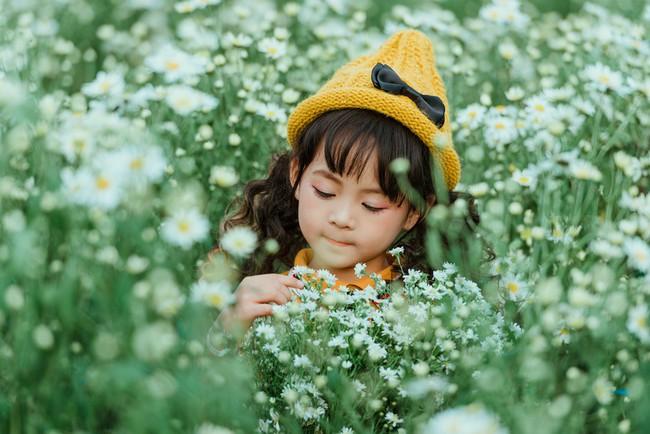 Đã xinh lại thần thái, bé gái Hà Nội dạo chơi trong vườn cúc họa mi khiến ai đi qua cũng phải ngoái nhìn - Ảnh 10.