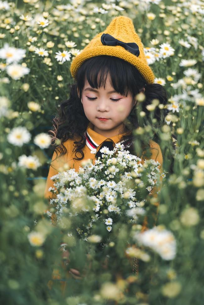 Đã xinh lại thần thái, bé gái Hà Nội dạo chơi trong vườn cúc họa mi khiến ai đi qua cũng phải ngoái nhìn - Ảnh 11.