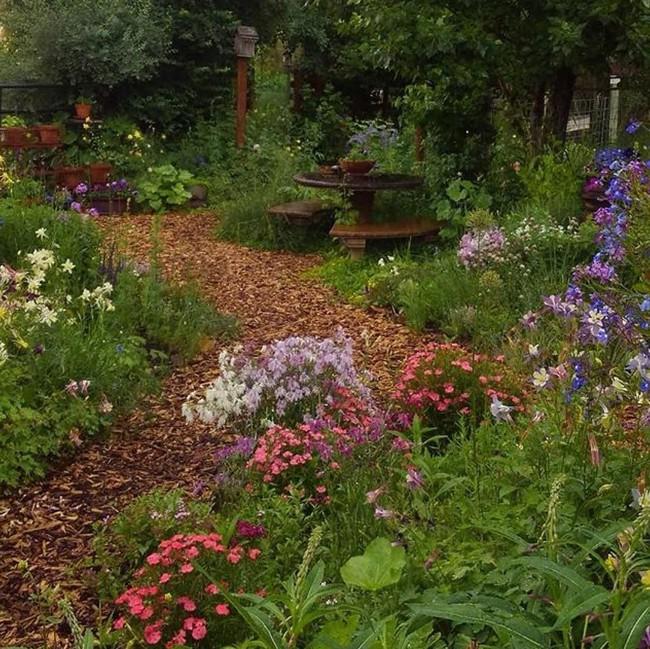 Cuộc sống đẹp như cổ tích của cặp vợ chồng trong căn nhà gỗ cùng mảnh vườn rộng 1.700m²  - Ảnh 6.