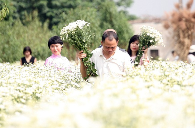 Phụ nữ, trẻ em chen nhau tạo dáng chụp ảnh kín đặc vườn cúc họa mi Nhật Tân - Ảnh 8.