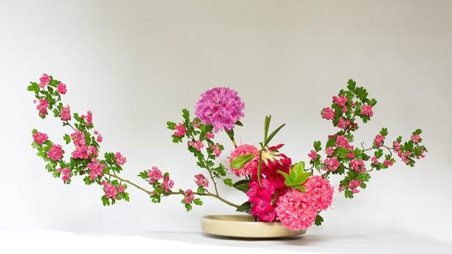 Ikebana - Nghệ thuật cắm hoa kết tinh từ triết lý sống của người dân đất nước Nhật Bản - Ảnh 8.