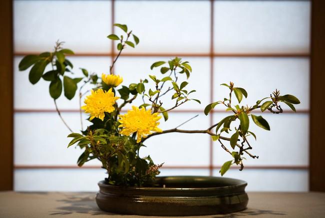 Ikebana - Nghệ thuật cắm hoa kết tinh từ triết lý sống của người dân đất nước Nhật Bản - Ảnh 7.