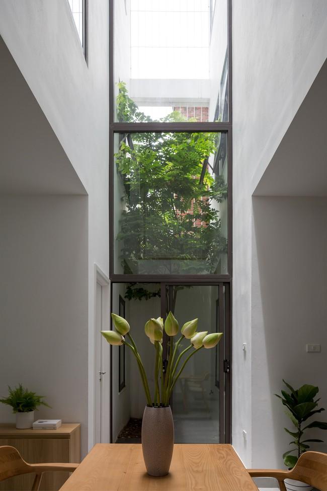 Xây từ miếng đất nhiều nhược điểm, ngôi nhà 85m² ở Hà Nội này vẫn được trầm trồ khen vừa đẹp, vừa xanh - Ảnh 11.