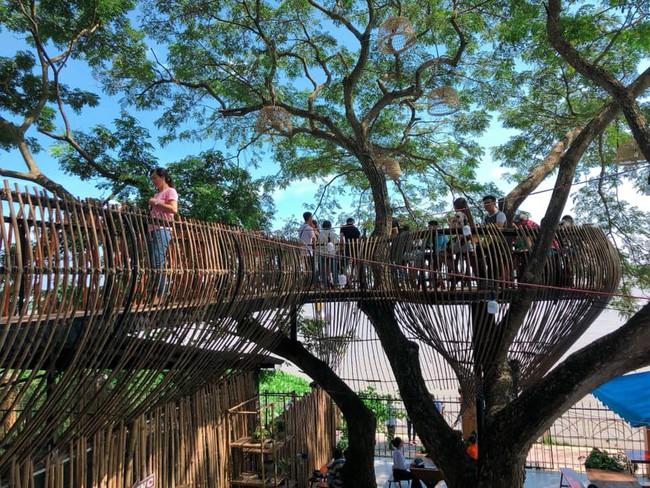 Chẳng cần sang Thái, ngay ở Cần Thơ cũng có quán cafe trên cây đẹp lung linh đang được check-in rầm rộ  - Ảnh 1.