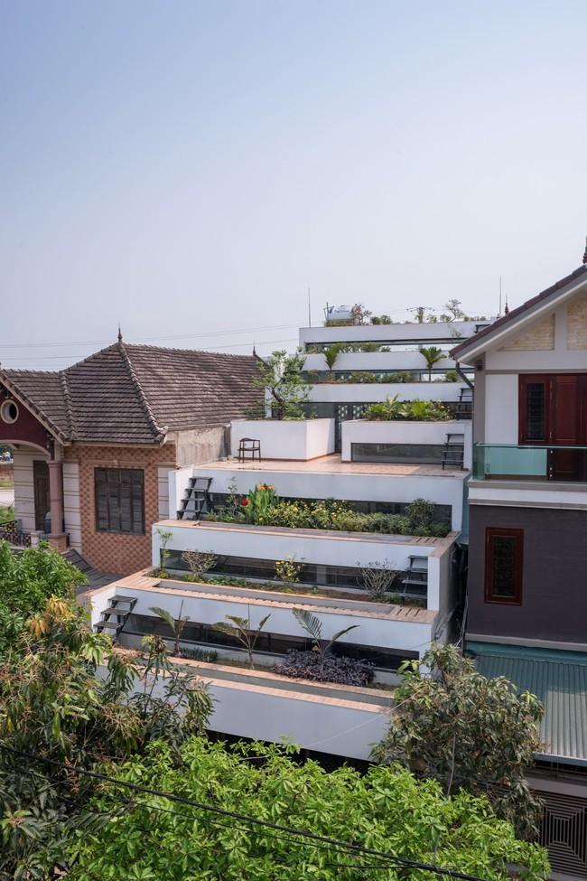 Cận cảnh ngôi nhà có ruộng bậc thang ngay mặt tiền đạt nhiều giải thưởng kiến trúc lớn ở Hà Tĩnh - Ảnh 1.