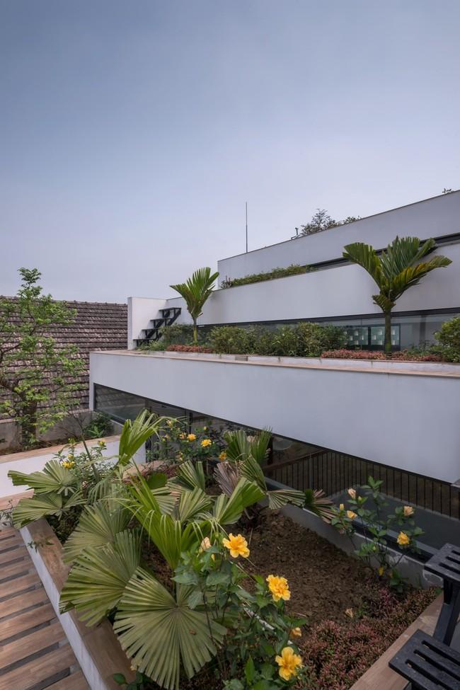 Cận cảnh ngôi nhà có ruộng bậc thang ngay mặt tiền đạt nhiều giải thưởng kiến trúc lớn ở Hà Tĩnh - Ảnh 18.