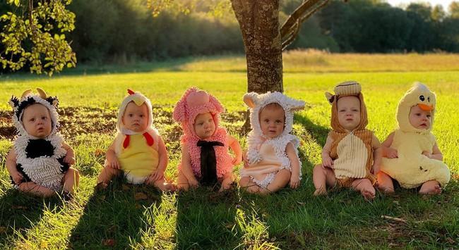 """Cuộc sống siêu bận rộn của gia đình sinh 6 em bé """"đẹp tựa thiên thần - Ảnh 5."""