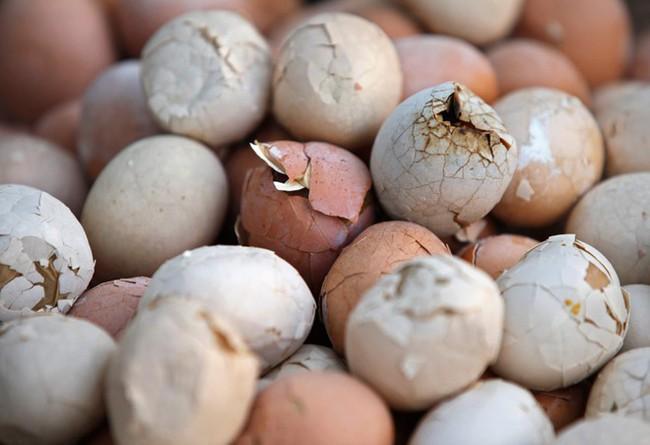 Thật khó tin: Món trứng luộc nước tiểu nghe hơi đáng sợ này lại là di sản văn hóa phi vật thể của Trung Quốc - Ảnh 6.