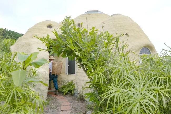 Ngôi nhà ấm áp vào mùa đông, mát lạnh vào mùa hè không cần đến điều hòa của thầy giáo dạy Toán - Ảnh 2.