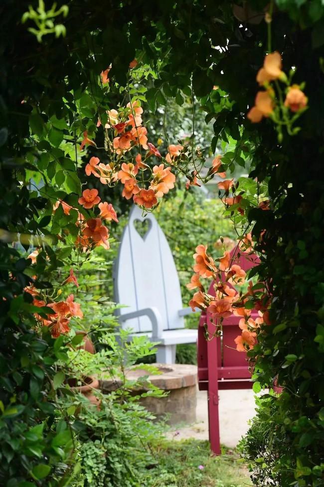 Khu vườn rộng 3000m² đẹp như cổ tích của vợ chồng 40 tuổi quyết định nghỉ hưu sớm về quê tận hưởng cuộc sống - Ảnh 12.