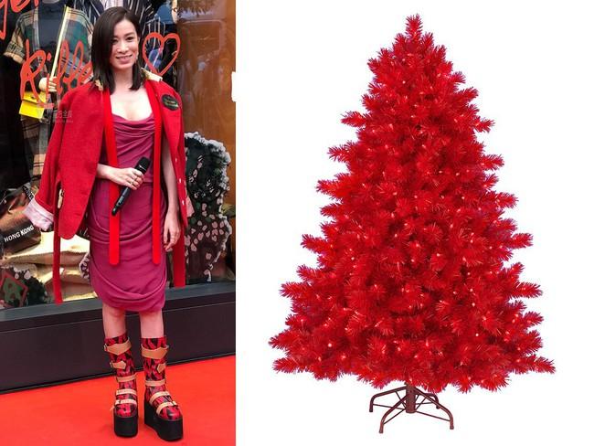 Halloween vừa qua, Giáng Sinh còn chưa tới nhưng Xa Thi Mạn đã nhập cuộc với set đồ cosplay cây thông Noel - Ảnh 6.