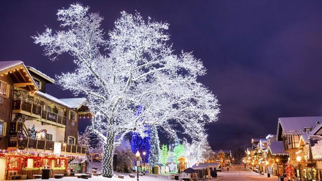 Ngắm những ngôi nhà đẹp như cổ tích lung linh trong mùa Giáng sinh - Ảnh 15.