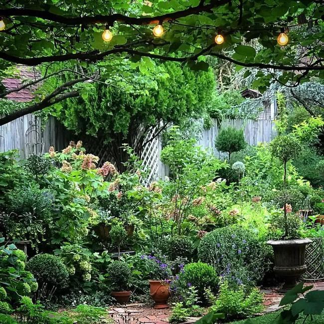 Vì tuổi thơ bất hạnh, người phụ nữ dành 20 năm để biến mơ ước tạo một khu vườn cổ tích trở thành hiện thực - Ảnh 11.