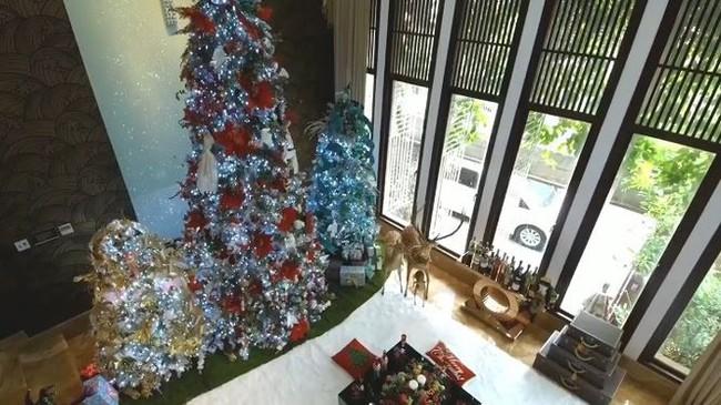 Biệt thự 60 tỷ của Đàm Vĩnh Hưng lung linh trong ngày Giáng sinh - Ảnh 12.
