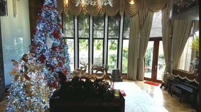 Biệt thự 60 tỷ của Đàm Vĩnh Hưng lung linh trong ngày Giáng sinh - Ảnh 14.
